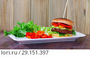 Купить «Delicious vegetarian hamburger with soybean patty and fresh vegetables», фото № 29151397, снято 20 апреля 2019 г. (c) Яков Филимонов / Фотобанк Лори