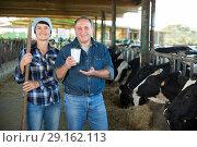 Купить «Happy spouses farmers on cow farm», фото № 29162113, снято 24 октября 2017 г. (c) Яков Филимонов / Фотобанк Лори