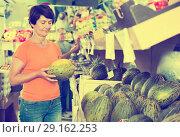 Купить «Female is choosing green melons», фото № 29162253, снято 22 октября 2017 г. (c) Яков Филимонов / Фотобанк Лори