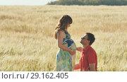 Купить «The young man kisses his wife in the belly, kneeling in warm summer in a wheat field», видеоролик № 29162405, снято 5 сентября 2018 г. (c) Mikhail Davidovich / Фотобанк Лори