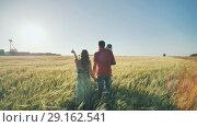 Купить «A young family with children goes to the field in the evening warm weather», видеоролик № 29162541, снято 4 сентября 2018 г. (c) Mikhail Davidovich / Фотобанк Лори