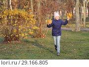 Купить «Веселая девочка в теплой шапке собирает букет из желтых листьев. Осень, прогулка в парке.», фото № 29166805, снято 6 ноября 2017 г. (c) Милана Харитонова / Фотобанк Лори