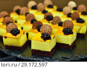 Купить «fruit dessert with berries divided into small portions», фото № 29172597, снято 7 апреля 2018 г. (c) Володина Ольга / Фотобанк Лори
