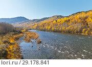 Купить «Siberian river Utulik, flowing into Lake Baikal on a sunny autumn day», фото № 29178841, снято 30 сентября 2018 г. (c) Виктория Катьянова / Фотобанк Лори