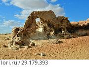 Sahara desert, Egypt (2008 год). Стоковое фото, фотограф Знаменский Олег / Фотобанк Лори