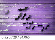 Купить «black bats over ultra violet shabby boards», фото № 29184065, снято 6 июля 2017 г. (c) Syda Productions / Фотобанк Лори
