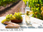 Купить «Still life with wine, grapes and bread at table in vineyards», фото № 29185573, снято 5 июня 2020 г. (c) Яков Филимонов / Фотобанк Лори