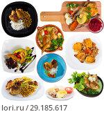 Купить «Set with dishes of delicious fried chicken with greens, garnish and vegetables», фото № 29185617, снято 19 ноября 2018 г. (c) Яков Филимонов / Фотобанк Лори