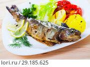 Купить «Roasted trout with potatoes, tomatoes, greens», фото № 29185625, снято 22 октября 2018 г. (c) Яков Филимонов / Фотобанк Лори