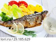 Купить «Baked trout with potatoes, tomatoes and white wine», фото № 29185629, снято 22 марта 2019 г. (c) Яков Филимонов / Фотобанк Лори
