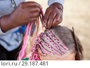 Купить «Afro American hairdresser made plaits in African style for young Caucasian girl, close-up», фото № 29187481, снято 19 июля 2018 г. (c) Кекяляйнен Андрей / Фотобанк Лори