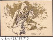 Купить «Боевые друзья, солдат показывает собаке фотографию любимой девушки. Почтовая карточка СССР 1943 года», иллюстрация № 29187713 (c) александр афанасьев / Фотобанк Лори