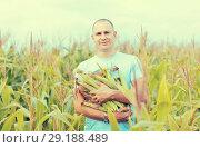 Купить «man in field of corn», фото № 29188489, снято 12 сентября 2012 г. (c) Яков Филимонов / Фотобанк Лори