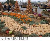 Праздник осени на Манежной площади (2018 год). Редакционное фото, фотограф Борис Плеханов / Фотобанк Лори