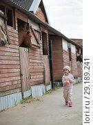 Купить «Little Girl feeds the horses», фото № 29189241, снято 22 апреля 2018 г. (c) Типляшина Евгения / Фотобанк Лори