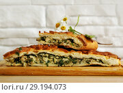 Купить «Fresh baked traditional pie with green onions and eggs», фото № 29194073, снято 18 июня 2019 г. (c) ElenArt / Фотобанк Лори