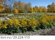 Купить «Ландшафтный дизайн в осеннем парке», эксклюзивное фото № 29224113, снято 12 октября 2018 г. (c) Елена Коромыслова / Фотобанк Лори