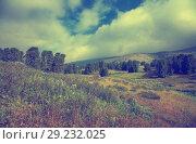 Купить «Altai mountains», фото № 29232025, снято 19 июля 2011 г. (c) Яков Филимонов / Фотобанк Лори