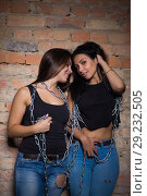 Купить «Two sexy brunettes», фото № 29232505, снято 5 сентября 2015 г. (c) Сергей Сухоруков / Фотобанк Лори