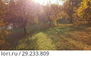Купить «Moscow, Russia - October 14. 2018. Izmaylovo Park and pond traditional place walks Muscovites», видеоролик № 29233809, снято 25 мая 2019 г. (c) Володина Ольга / Фотобанк Лори