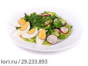 Купить «Salad of cucumbers, eggs and radish», фото № 29233893, снято 6 октября 2018 г. (c) Art Konovalov / Фотобанк Лори