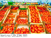 Купить «Boxes of red tomatoes on sale in a supermarket.», фото № 29234181, снято 20 августа 2018 г. (c) Акиньшин Владимир / Фотобанк Лори