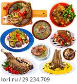 Купить «Collection of mutton meals», фото № 29234709, снято 16 декабря 2018 г. (c) Яков Филимонов / Фотобанк Лори