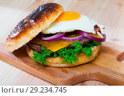 Купить «Hamburger with with fried egg, beef, onion, cheese and lettuce», фото № 29234745, снято 22 октября 2018 г. (c) Яков Филимонов / Фотобанк Лори