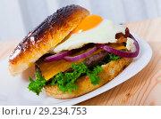 Купить «Delicious hamburger with beef cutlet, fried egg, lettuce and cheese», фото № 29234753, снято 16 октября 2018 г. (c) Яков Филимонов / Фотобанк Лори
