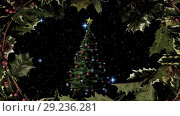 Купить «Christmas tree and holly border with stars», видеоролик № 29236281, снято 16 октября 2018 г. (c) Wavebreak Media / Фотобанк Лори