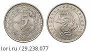 Купить «Монета 5 теньге. Республика Казахстан», фото № 29238077, снято 22 января 2016 г. (c) Евгений Ткачёв / Фотобанк Лори