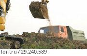Купить «Excavator loads a truck», видеоролик № 29240589, снято 17 августа 2018 г. (c) Kozub Vasyl / Фотобанк Лори