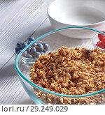 Купить «Organic homemade Granola Cereal with oats and fresh berries. Texture oatmeal granola or muesli in aglass bowl on a gray background.», фото № 29249029, снято 20 июня 2018 г. (c) Ярослав Данильченко / Фотобанк Лори