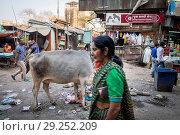 Купить «India, Varanasi, daily life», фото № 29252209, снято 5 марта 2018 г. (c) age Fotostock / Фотобанк Лори