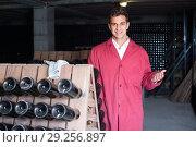 Купить «smiling man wearing uniform working with bottle storage racks», фото № 29256897, снято 21 сентября 2016 г. (c) Яков Филимонов / Фотобанк Лори