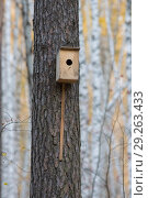 Купить «Bird house hanging from the tree with the entrance hole in the shape of a circle in autumn forest», фото № 29263433, снято 14 октября 2018 г. (c) Константин Шишкин / Фотобанк Лори