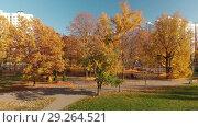 Купить «Moscow, Russia - October 17. 2018. Autumn park in Zelenograd», видеоролик № 29264521, снято 17 октября 2018 г. (c) Володина Ольга / Фотобанк Лори