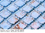 Купить «Vintage metal light blue door with rusty architectural details in form of flowers. Metal architecture background», фото № 29273001, снято 24 августа 2018 г. (c) Зезелина Марина / Фотобанк Лори