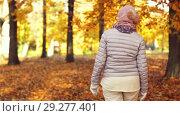 Купить «happy senior woman walking along autumn park», видеоролик № 29277401, снято 22 октября 2018 г. (c) Syda Productions / Фотобанк Лори