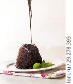 Купить «to pour chocolate cake with chocolate syrup and mint leaves on a white plate», фото № 29278393, снято 26 августа 2016 г. (c) Tetiana Chugunova / Фотобанк Лори