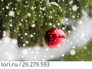 Купить «red christmas ball on fir tree branch with snow», фото № 29279593, снято 11 ноября 2016 г. (c) Syda Productions / Фотобанк Лори