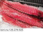 Купить «fresh tuna fish or seafood on ice at makret stall», фото № 29279925, снято 10 февраля 2018 г. (c) Syda Productions / Фотобанк Лори