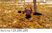 Купить «Autumn. Small children in the yellow leaves. Children play in the street with fallen leaves. Autumn grove of birches and maples. Boys throw up fallen leaves of trees in the top. A child sits on a carpet of yellow leaves and scatters leaves. boy crawls out from under the autumn leaves, joyfully spreading his arms. Happy kids on the street», видеоролик № 29290285, снято 13 октября 2018 г. (c) Константин Мерцалов / Фотобанк Лори