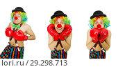 Купить «Clown with boxing gloves isolated on the white», фото № 29298713, снято 21 апреля 2014 г. (c) Elnur / Фотобанк Лори
