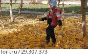 Купить «Autumn. Small children in the yellow leaves. Children play in the street with fallen leaves. Autumn grove of birches and maples. Happy kids on the street. boy walks through fallen autumn foliage. child kicks autumn leaves that fly high up. slow motion», видеоролик № 29307373, снято 22 марта 2019 г. (c) Константин Мерцалов / Фотобанк Лори