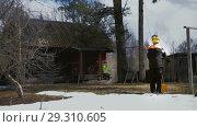 Купить «Arborists stretch the rope to the top of the tree», видеоролик № 29310605, снято 20 марта 2019 г. (c) Даниил Хабаров / Фотобанк Лори