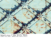 Купить «Metal architecture retro background. Vintage metal blue surface with rusty architectural details in the form of flowers», фото № 29313701, снято 24 августа 2018 г. (c) Зезелина Марина / Фотобанк Лори