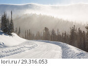 Купить «Snowy winter road during blizzard in Russia. Heavy snow storm.», фото № 29316053, снято 12 декабря 2018 г. (c) Владимир Пойлов / Фотобанк Лори