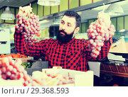 Купить «Positive man seller choosing grapes in store», фото № 29368593, снято 15 ноября 2016 г. (c) Яков Филимонов / Фотобанк Лори