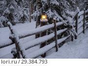 Vintage lamp in frozen forest. Стоковое фото, фотограф Liseykina / Фотобанк Лори